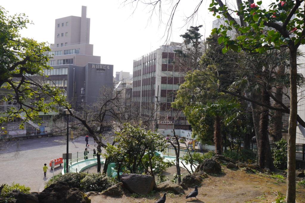 錦華坂から錦華公園をのぞむ